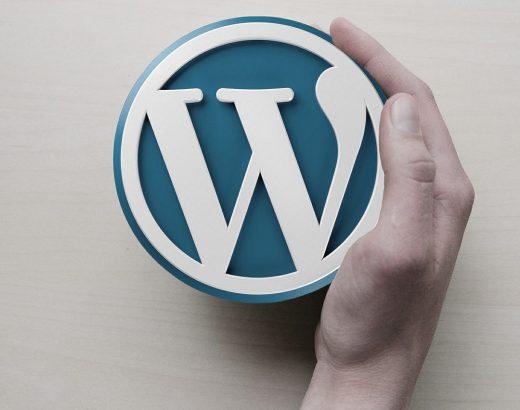 Wordpress - Die eigene Homepage erstellen können