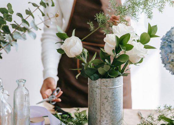floristik lernen